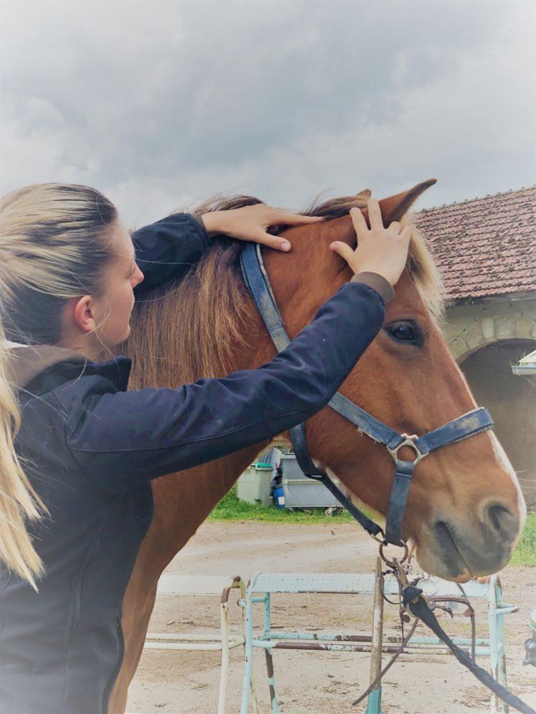 Adaptation cavalier et équidé Saddle Fitting Haute Savoie et Rhône Alpes