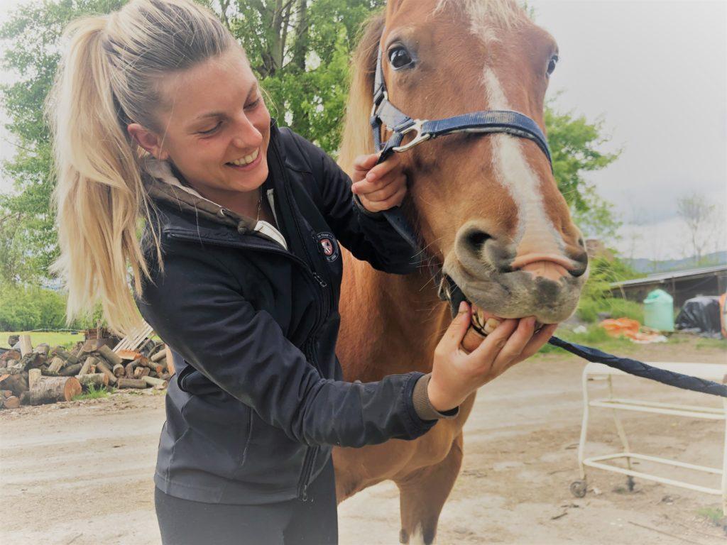 Matériel pour équidé saddle et bit fitting en région Rhône Alpes et Haute Savoie