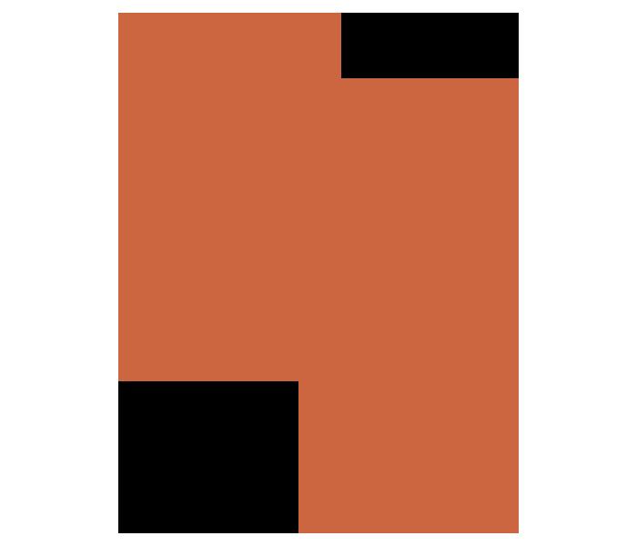 Bit Saddle Fitting Ergonome équin